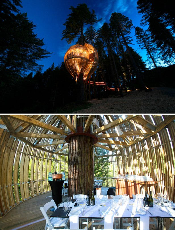 35 Of The World's Most Amazing Restaurants To Eat In Before You Die - Enjoy Your Special Event In The Sustainable Tree House, Redwoods Treehouse, Warkworth, New Zealand